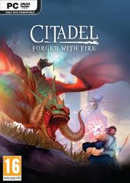 Citadel.Forged.with.Fire.The.Godkings.Vengeance-PLAZA